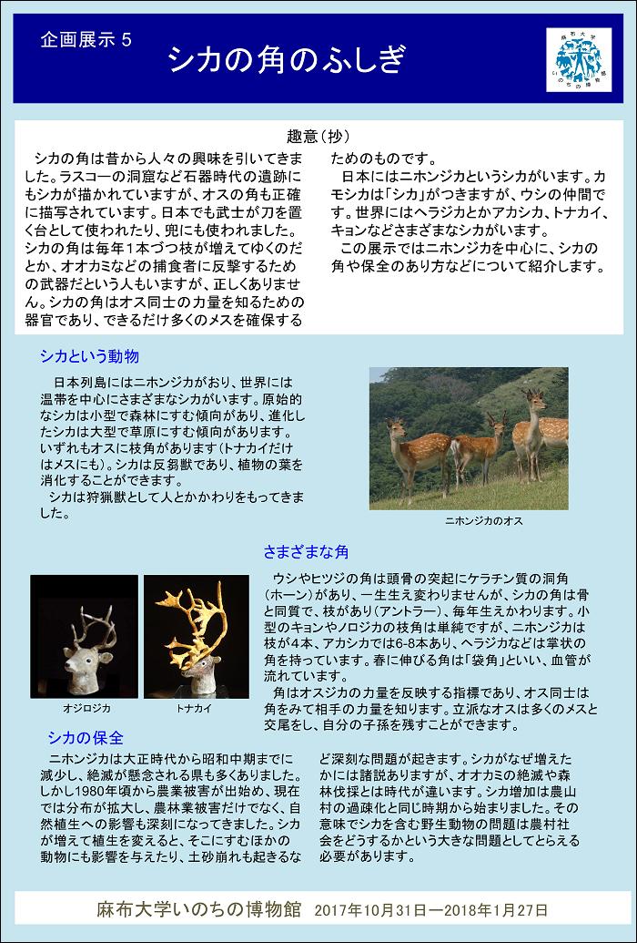 https://life-museum.azabu-u.ac.jp/exhibition/blog-img/kikaku5_pamphlet.png