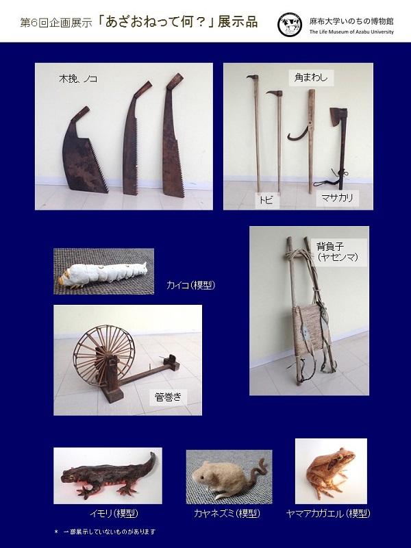 https://life-museum.azabu-u.ac.jp/exhibition/files/tenjihin.jpg