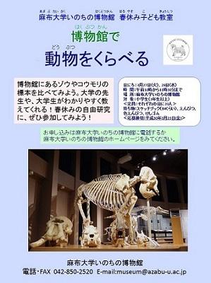【終了】春休み子ども教室「博物館で動物をくらべる」