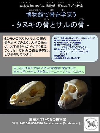 【終了】夏休み子ども教室「博物館で骨を学ぼう」