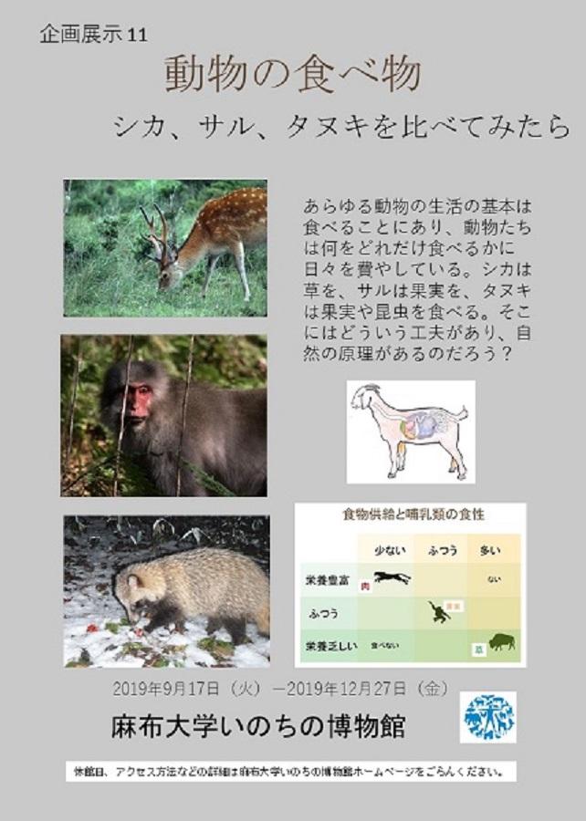 https://life-museum.azabu-u.ac.jp/news/files/c7ab66713d8c4e5b254c89c6345ec00b.jpg