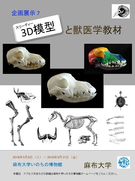 企画展示7「3D模型と獣医学教材」