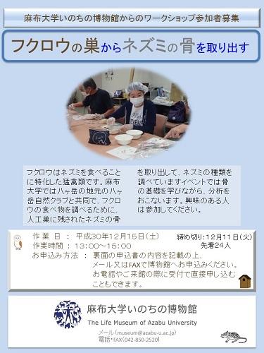 12月15日のワークショップでは弘前のリンゴ園のフクロウも分析します
