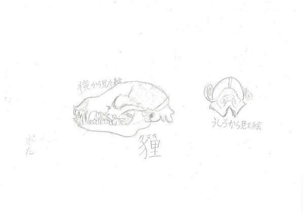 髙橋央(5年)(725タヌキ)